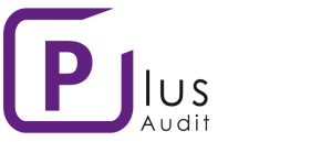 Logo Plus audit